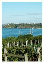 Te Whau Lodge - Waiheke Island, off the North Island, New Zealand http://www.tewhaulodge.co.nz/