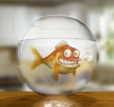 An attempt at a photo-real version of Klaus the German goldfish from American Dad. I'm reasonably happy with the result as it's the first time. Klaus the German Goldfish Facebook Timeline Photos, Timeline Cover Photos, Cover Pics, Animation, Twitter Cover Photo, American Dad, Fb Covers, Covers Facebook, Gif Animé