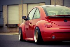 clean beetle