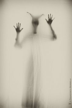 francesco1969 | The Beast | Flickr - Photo Sharing!