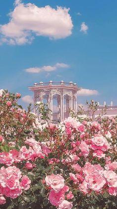 The brilliant castle hidden behind the pink flower fantasycastle flowerphotography flowerwallpaper springflower pinkflower # Nature Aesthetic, Flower Aesthetic, Aesthetic Vintage, Blue Aesthetic, Aesthetic Pastel Pink, Pink Tumblr Aesthetic, Spring Aesthetic, Aesthetic Women, Aesthetic Grunge