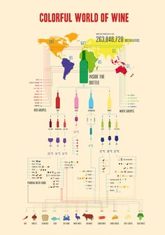 Colorful world of wine