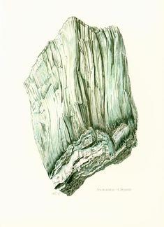 1970 Illustration Antigorite Serpentine. Planche Originale Pierres Minéraux Roches Cristaux. Geologie. Joaillerie. Decoration murale. de la boutique sofrenchvintage sur Etsy