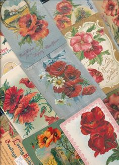 FLORAL LOT of  23~  POPPIES VINTAGE FLOWERS GREETINGS POSTCARDS-a-761…