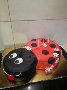 Raspberry ladybug cake for birthady 😊
