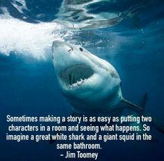 #sharkfact #JimToomey