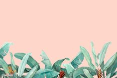 Download premium vector of Hand drawn tropical leaves on a pastel pink