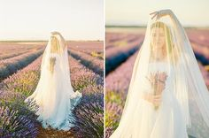 Lavender Field Couples Session in Spain by Natalia Ortiz Wedding Planner Spain Wedding Abroad, Lavender Fields, Love Story, Wedding Planner, Madrid, Spain, Couples, Wedding Dresses, Lace