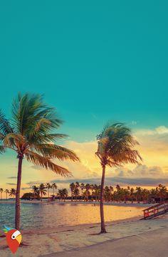 We ❤️ FLORIDA: Roadtrip ab 799€ #travel #roadtrip #adventure #usa