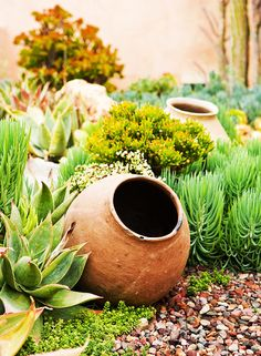 Combine jars and pots among succulents and cacti for an interesting desert garden.
