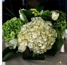 green/white centerpiece, low, hydrangeas, tulips