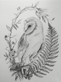 owl tattoo drawings \ owl tattoo ` owl tattoo design ` owl tattoo for women ` owl tattoo drawings ` owl tattoo small ` owl tattoo men ` owl tattoo sleeve ` owl tattoo for women small Owl Tattoo Drawings, Animal Drawings, Art Drawings, Tattoo Owl, Owl Tattoo Back, Tattoo Pics, Tattoo Ideas, Graphite Drawings, Drawing Sketches