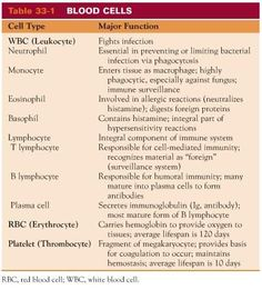 Blood Cell Chart: