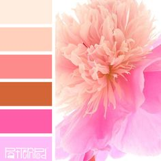 Color combinations, paint colors, color schemes, color palette challenge, c Office Color Schemes, Living Room Color Schemes, Blue Color Schemes, Color Combos, Color Palet, Design Seeds, Color Blending, Shabby, Color Inspiration