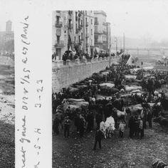 Mercat de bous a Girona :: Fons fotogràfic Salvany (Biblioteca de Catalunya)