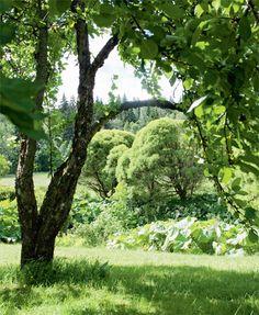 Finnish greenery