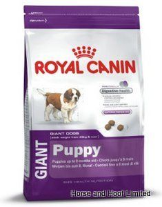 Only the BEST for my Saint - Royal Canin Giant Puppy 4 kg Royal Canin Giant Puppy is a unique food designed to suit the nutritional needs of giant breed puppies as they go  through their exceedingly rapid growth phase.