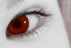 Halloween contacts | Halloween Contact Lenses Create a Special Effect |Articles Web