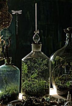 https://www.facebook.com/forestforever.art/photos/a.1502557673317426.1073741831.1502167386689788/1786640924909098/?type=3