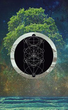 Tree of Life ~ Filip Aura Mensl (2014)