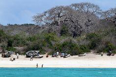 Mozambique 03200 by babasteve, via Flickr