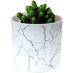 original_marble-effect-ceramic-vase-plant-pot.jpg (900×880) ❤ liked on Polyvore featuring home, home decor, plants, fillers, decor, ceramic plant pots, ceramic flower pots and ceramic home decor