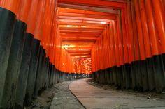 Il santuario di Fushimi Inari Torii a Kyoto; visto!!! è meraviglioso!