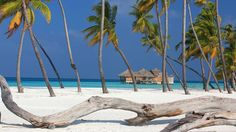 Luxury five-star Maldives hotels.