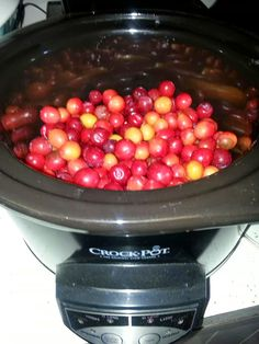 Sand plum recipe.  Step by step of the fun time of canning jam!