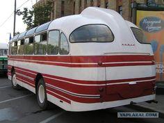 Круглый автобус