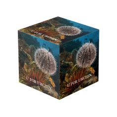 U Is For Urchin Cube Photo Cubes, Images And Words, Cleaning Wipes, Decorative Boxes, Display, Create, Wood, Metal, Prints