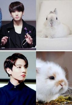 Jungkook is a bunny hehehe :3