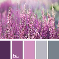 winter color palette palettes with color ideas for decoration your house, wedding, hair or even nails. Scheme Color, Colour Pallete, Colour Schemes, Color Combos, Color Palettes, Lavender Color Scheme, Purple Wedding Flowers, Wedding Colors, Wedding Blue