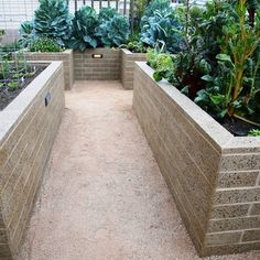 This is an awesome design! Practical height ... Easy to tend without stooping! Love it! ... Diego Home Vegetable Garden Design, Pictures, Remodel, Decor and Ideas