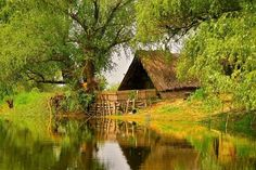 The Danube Delta, Romania Credits: Petrica Timis Danube Delta, Romania Travel, Bucharest Romania, Our Country, The Good Place, Case, Amazing Places, World, House Styles