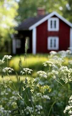 Red cottage , Sweden I wonder if i could paint my house this color and get away with it? Country Farm, Country Life, Country Living, Red Cottage, Garden Cottage, Cottage Image, Red Houses, Jolie Photo, Farm Life