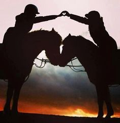 Sunset horseback riding ♥ if only I rode horses. Pretty Horses, Beautiful Horses, Animals Beautiful, Horse Girl, Horse Love, Classic Equine, Horse Quotes, Shooting Photo, Equine Photography