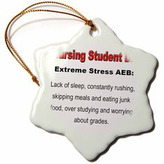 3dRose orn_123055_1 Nursing Student Extreme Stress AEB Nursing Humor Snowflake Porcelain Ornament, 3-Inch >> If you love this, read review now : Christmas Decorations