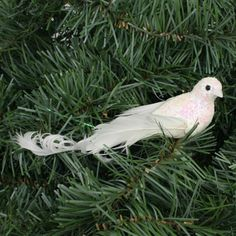 Turtle Dove Ornaments, Jolly Holiday, Holidays, Bird, Animals, Image, Holidays Events, Animales, Animaux