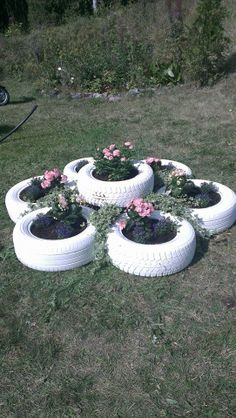 Plantation of old tire (Facebook)