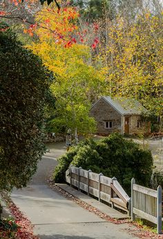 Moving To Australia, South Australia, Living In Adelaide, Photography Photos, Sidewalk, Explore, House Styles, Beautiful, Art