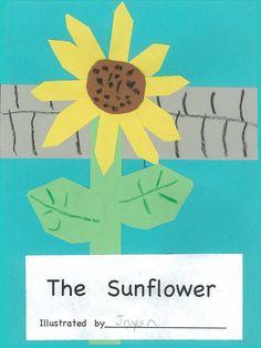 Chalk Talk: A Kindergarten Blog: TLC Lessons- The Sunflower Book