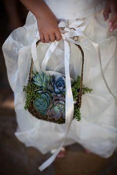 Flower girl basket of succulents Floral Wedding, Wedding Bouquets, Wedding Flowers, Our Wedding, Dream Wedding, April Wedding, Wedding Bells, Succulent Bouquet, Succulent Ideas