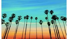 Photo about California sunset Palm tree rows in Santa Barbara US. Image of nature, palm, sunrise - 37498786 California Sunset, California Vacation, Southern California, California Coast, Destinations, Virgin Atlantic, Win A Trip, Beautiful Sites, Beautiful Beaches
