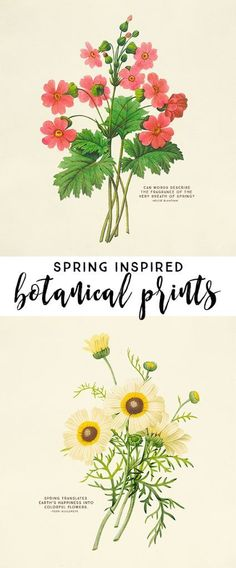 Free Spring Printables: Spring Art For Your Home! Pretty Free Spring Printables: Spring Art For Your Home!Pretty Free Spring Printables: Spring Art For Your Home! Free Poster, Vintage Botanical Prints, Botanical Art, Vintage Prints, Spring Art, Subway Art, Love Is Free, Free Prints, Art Plastique