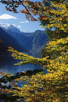 Autumn foliage scenic river view, Berchtesgaden National Park, Germany (National Geographic / Norbert Rosing).