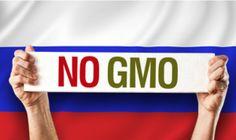 Par F. William Engdahl La Russie tire les conséquences de sa décision de l'automne dernier, d'interdire la plantation commerciale d'organismes génétiquement modifiés (OGM) sur ses superficies agricoles. Sa dernière décision, à compter du 15 Février 2016,...