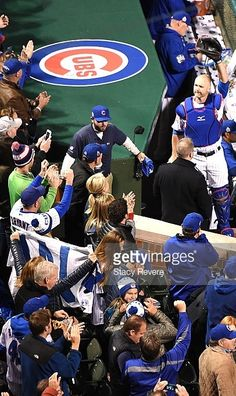 David ROss,CHC and fans//Oct 30,2016 World Series Game 5 v CLE