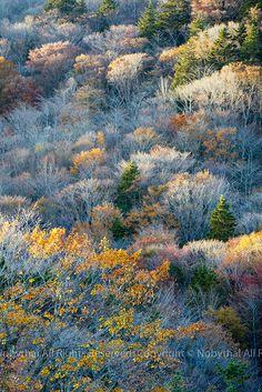 Autumn in Oku-Mikawa, Japan