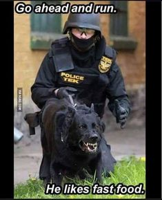 Not how real police think. Police help people very sick. Police Humor, Police Dogs, Funny Police, Funny Dogs, Funny Animals, Cute Animals, Humor Animal, Funny Shit, Funny Memes